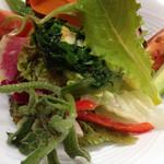 70149824 - 色とりどりの野菜サラダです。