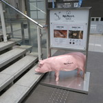 ハイライフ ポーク テーブル - 可愛い豚が目印