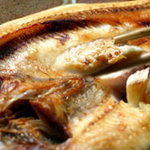 積丹浜料理 第八 太洋丸 - 積丹の巨大ほっけ!2~3人でも1匹でOK!