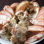 積丹浜料理 第八 太洋丸 - 毛蟹姿盛り!ギッシリ身が詰まった物だけをご提供!