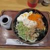 うどんの幸助 - 料理写真:サラダうどん