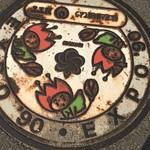 70299821 - 花ずきんちゃん