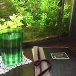 70312794 - お冷のグラスとメニュー                       そして、ネオンテトラの泳ぐ水槽
