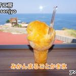 氷菓工房 Akane Senjyo - 料理写真:みかんまるごとかき氷