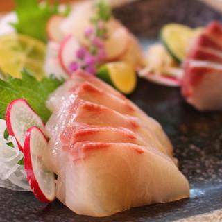 地元の新鮮魚介を堪能できます!