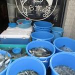 ら京 - 今日は店頭でお魚販売デー