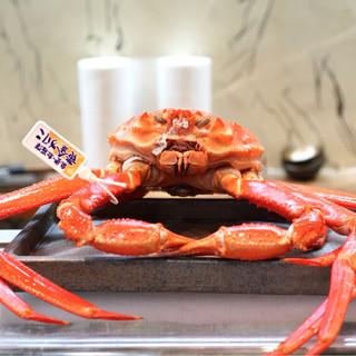 寿司栄 - 料理写真:☆能登 黄金蟹