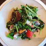 organ - 鮮魚のスモークとパクチー、ピンクグレープフルーツのサラダ