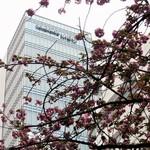 ハーバーズ・ダイニング - 横浜メディアセンタービルが見えてきました。
