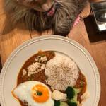 Cat Cafe てまりのおうち - 目玉焼きのっけキーマカレー&オペラの頭