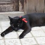 ネコノテパン工場 - おまけ・暑いのに近所で寝転んでいたニャンコ(2017.7.24)