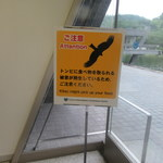 Guriru - 最近京都の制空権はこの方たちが握っています
