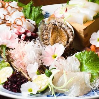 明石の昼網活鮮魚