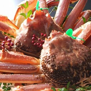 間人漁港からわずか5分!鮮度抜群の幻の間人蟹を堪能!