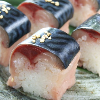宮城県石巻港直送!幻の金華鯖の棒寿司は、絶品!