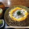 昭陽 - 料理写真:おろしそば大盛り¥200増し