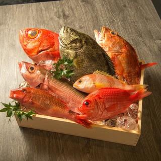 漁獲量が少ない稀少な天然魚介類を使用しています!!