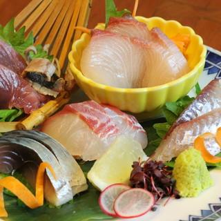 【新鮮魚介ワッショイ!】旬の鮮魚を日替わりでご提供★