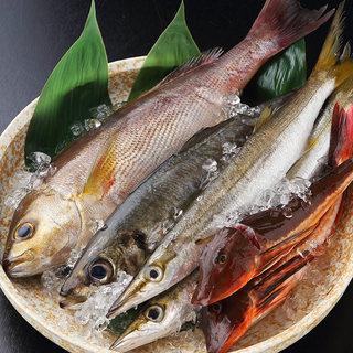 【新鮮食材】築地直送鮮魚!!彩り豊かな厳選素材