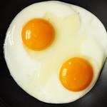 お好きな卵料理