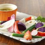 トラットリア ナカタ - オーナーからの感謝の気持ちを表現『バーニャカウダ 有機野菜のアンチョビガーリックソース』