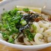 合田うどん - 料理写真:ぶっかけ