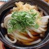 宝製麺所 - 料理写真:ぶっかけうどん(冷)