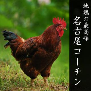 地鶏の最高峰日本三大地鶏の一種「純系名古屋コーチン」使用店!