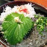江の島 貝作 -