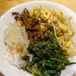 焼肉ホルモンブンゴ - ナムル盛り合わせ