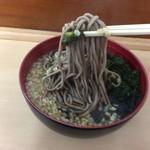 そば処 八甲田 - 麺リフトしてみました