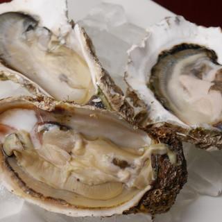 普段味わうことのできない非日常的な【牡蠣料理】の数々
