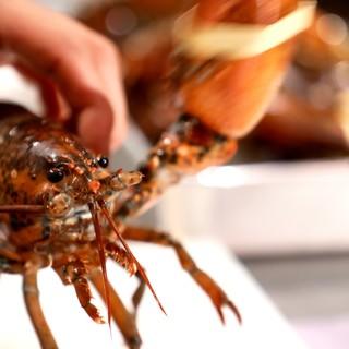〈フランス・イタリア料理の技法を使った『地中海料理』〉