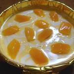 FORMA - マンゴーのチーズケーキ