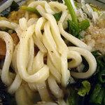 さぬきうどん 三代目 春仙 - 「具だくさんかけうどん」麺