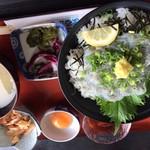 いわき七浜料理 まるかつ - 生しらす丼