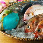 ニライカナイ - 沖縄から空輸で直送!産直島魚の料理