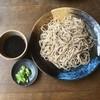 Honkakuteuchisobafujimura - 料理写真:もりそば大盛  100円増し