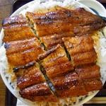 71058847 - うなぎ丼(並)+ご飯大盛り