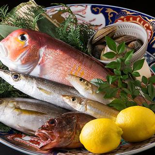 旬の魚介は毎日市場で直接目で見て厳選しております。