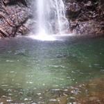 71121054 - 都会から直ぐの場所でこんなに美しい滝がみれるなんてありがたいです