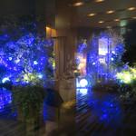 セストセンソ - 夜のライトアップ