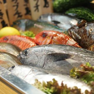 渡嘉敷島直送!新鮮魚料理