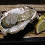 駒龍 - 極上の三陸の岩牡蠣