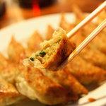 Hiromedeyasubee - 料理写真:屋台餃子