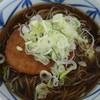 立ち食いそば はせ川 - 料理写真:葱たっぷり