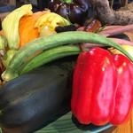 五條 源兵衛 - 見るからに美味しそうな野菜たち