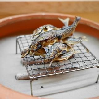 松川 - 料理写真:美山の天然鮎