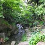 蘇山荘 - 虎の尾にはヤブミョウガが咲いていました