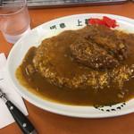 福島 上等カレー - 料理写真:ミンチカレー [大]